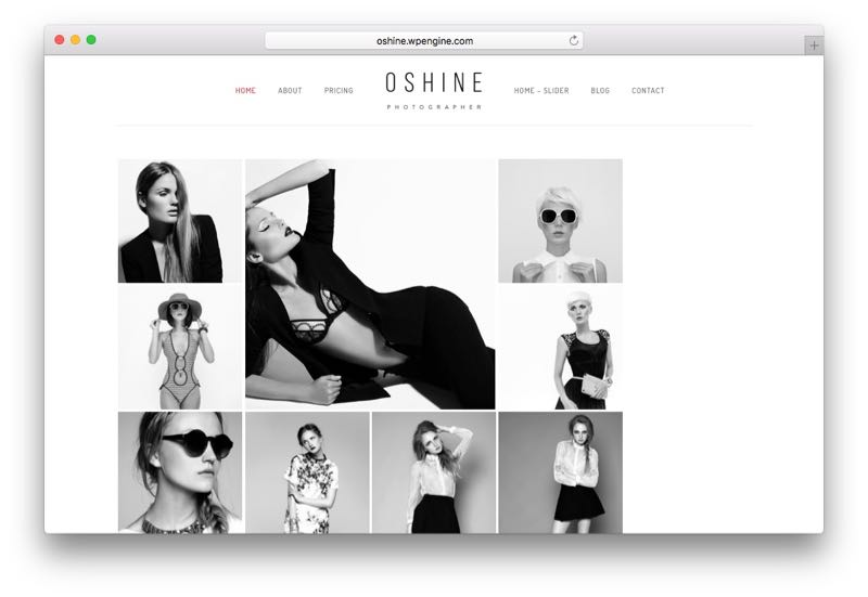 oshine-wordpress-photography-theme