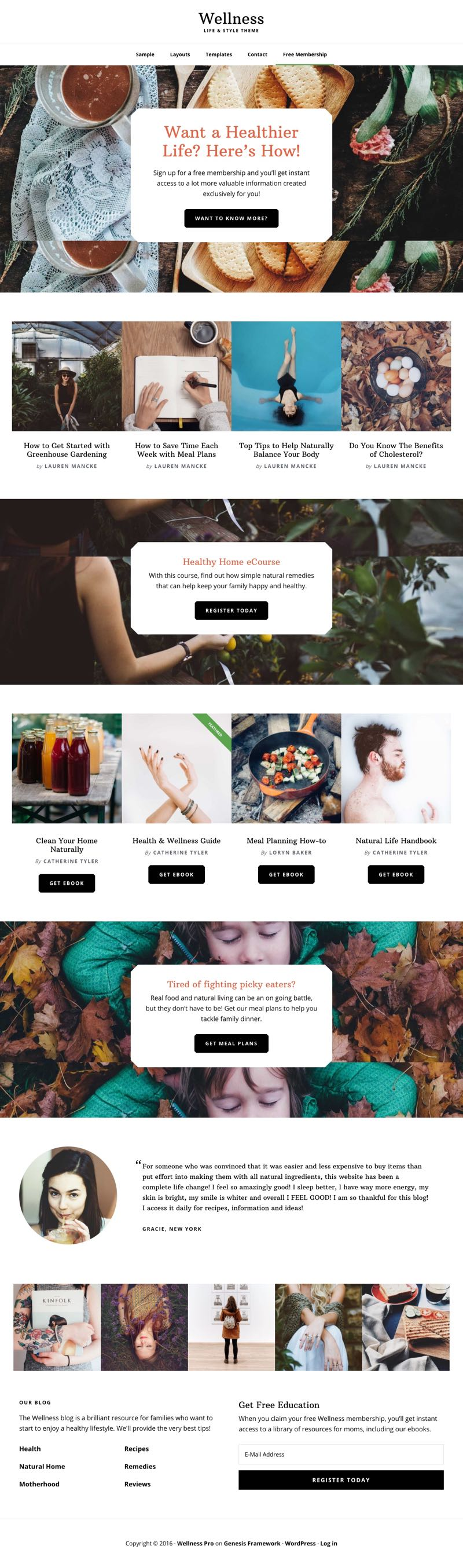 Wellness Pro WordPress Health & Life Style Theme