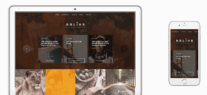 Relive WordPress Storytelling Theme for Long-Form Content
