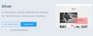 Silver WordPress Fashion Designer & Visual Creators Theme