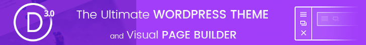 The Ultimate WordPress Theme & Visual Page Builder Plugin