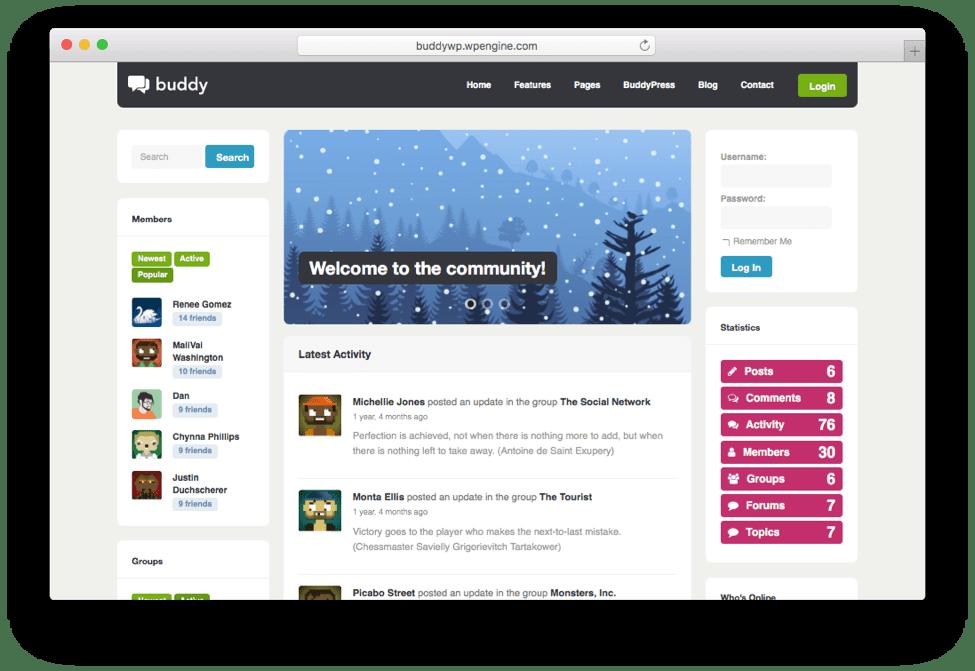 Buddy Multi-Purpose BuddyPress Theme