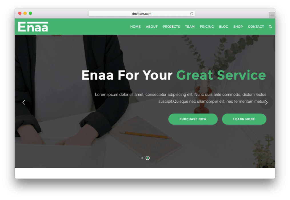 Enaa OnePage Corporate WordPress Theme