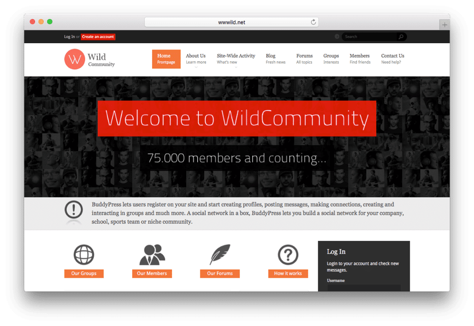 WildCommunity WordPress Social Network Theme