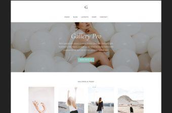 Gallery Pro WordPress Theme for Genesis Framework