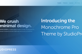 Monochrome Pro WordPress Theme for Genesis Framework