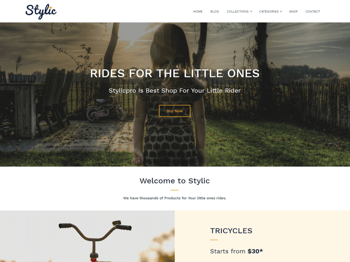 Stylic Free WordPress Software & Shop Theme