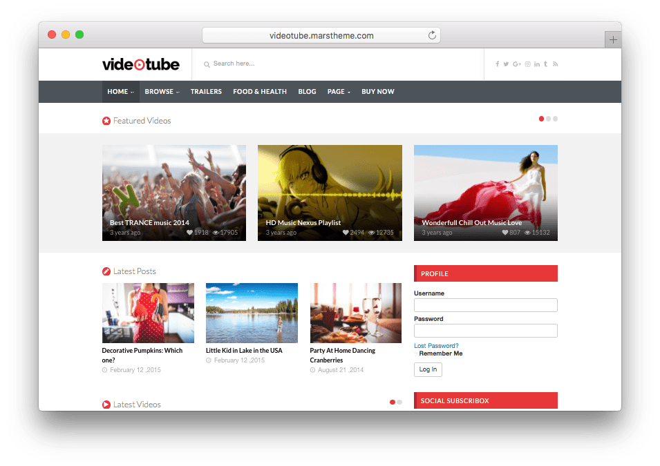 VideoTube Theme Embed or Upload Videos Theme