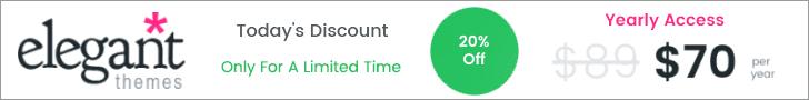20% Discount on WordPress Theme