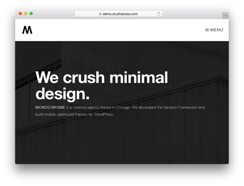 Monochrome Pro WordPress Minimal Creative Theme